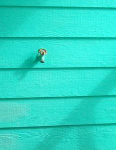 Turquoise | Aqua | Minty | Painted wooden wall
