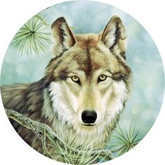 Thirstystone Occasions Drink Coasters, Lone Wolf, Multicolor