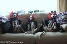 Devil doggies
