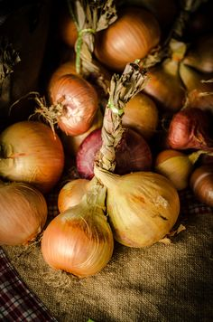 onions, farmers market, Auckland, New Zealand