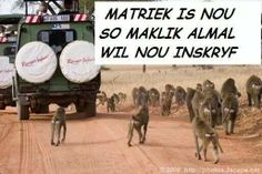 Matriek....eish!!!! Afrikaanse Quotes, My Land, Cool Words, Funny Quotes, Jokes, Lol, Bullshit, Sayings, Text Messages