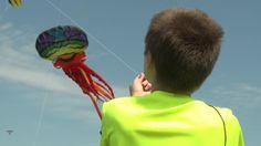 kites_green