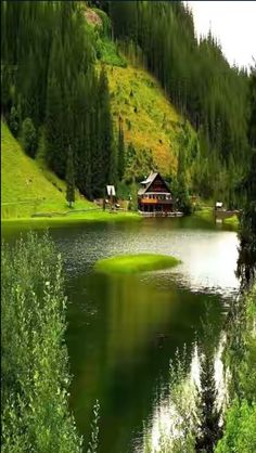 Lake - Lakes Wallpaper ID 1141531 - Desktop Nexus Nature Beautiful World, Beautiful Places, Beautiful Pictures, Magic Places, Places To Go, Haus Am See, Relaxing Places, Lens Flare, Nature Pictures