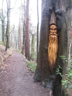 Carved tree face