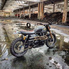 Triumph #scrambler discover #motomood