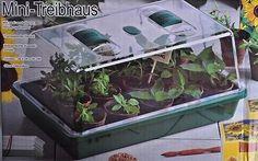 Mini-Treibhaus Gewächshaus Zimmergewächshaus Anzuchthaus Pflanzhaus Haus Pflanze