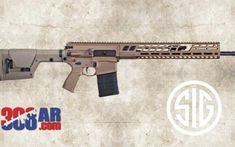 6.5 Creedmoor AR | Most Accurate AR Caliber | 308 AR