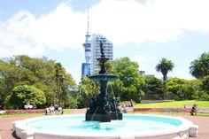 O que fazer em Auckland em 1 dia #Viajoteca