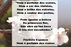 Florbela Espanca- Nem o perfume dos cravos...- Poesia Visual ~ Poemas e Versos