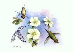 hummingbird afb