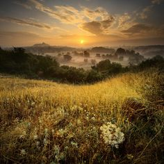 I would love to go back to Ukraine one day and see ALL its beauties.