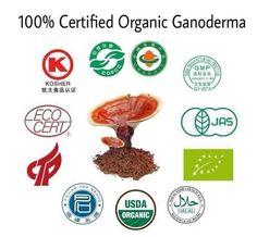 Organic, Health, Gold, Health Care, Salud, Yellow