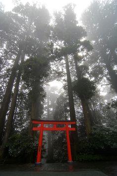 Torii- shrine gate -Japan