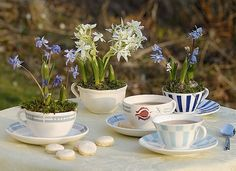 Creative DIY Gardening Idea # 14: Tea Party Table Garden
