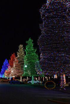 Swan Lake Fantasy of Lights, Christmas 2012, Sumter, SC