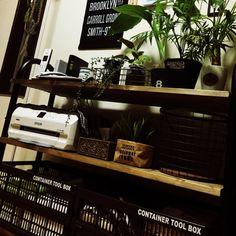 コンテナボックス/DIY/SPF材/観葉植物/ダイソー/バスロールサイン…などのインテリア実例 - 2015-11-28 22:17:22 | RoomClip(ルームクリップ)