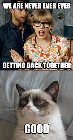 Grumpy cat & Taylor Swift break up. LOL!