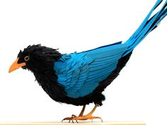 Stunningly Lifelike Birds Made Entirely From Paper   Go find some worms buddy. Diana Beltran Herrera   WIRED.com