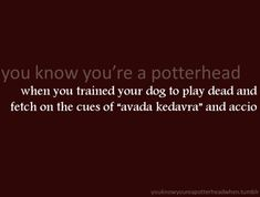 Oh, I am SO training my dog to do this!