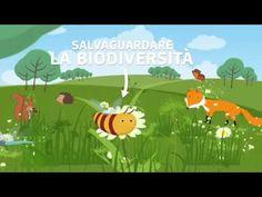 Salvaguardare La Biodiversità