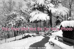 SU 1089 - Terrace Gardens, Richmond, Surrey - 6x4 Photo Richmond Bridge, Richmond Surrey, Terrace Garden, Hampshire, Closer, Photograph, Gardens, Outdoor, Image