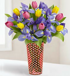 The lovely Iris with beautiful tulips! So Pretty! Happy Tuesday!