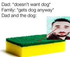 Stupid Memes, Dads, Baseball Cards, Fathers