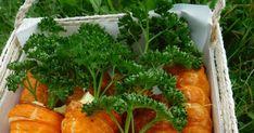 recette carottes feuilletées garnies oeuf surimi idée entrée pâques Omelettes, Quiches, Seaweed Salad, Charcuterie, Bon Appetit, Cocktails, Yummy Food, Ethnic Recipes, Easter Recipes