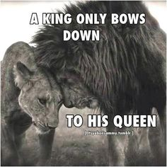 "* * "" MALE LION: "" I iz tellin' yoo de truth. I loves you like all de other females in my Pride. It'z de way of our kingdom."""