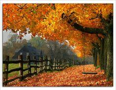 Paysage d'automne                                                       …