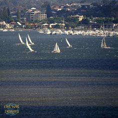 Perth, Western Australia, Swan River, Yacht Racing Travel Sights, Western Australia, Perth, Swan, Westerns, Travelling, Road Trip, Scenery, Racing