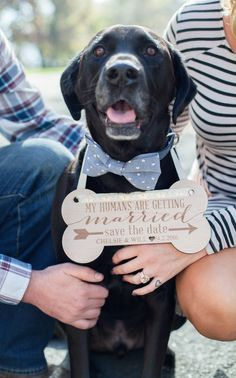 Personalized Engagement Sign for your pet! This makes the cutest engagement photo for Save the Dates! | www.zcreatedesign.com or ZCreateDesign on Etsy