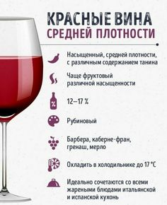 wine aesthetic,wine décor,wine night,wine sayings,wine quotes Red Wine Drinks, Red Wine Sangria, Pinot Noir, Red Wine Benefits, Sweet Red Wines, Wine Chart, Red Wine Stains, Red Wine Vinaigrette, Homemade Wine