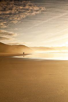cuando la playa  es de oro ...
