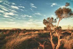 And, of course, the sprawling Australian Outback in between
