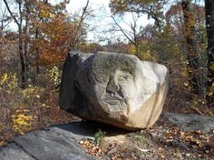 """Central Park is filled with fun surprises.  I had to smile when I came across this """"face"""" in the North Woods:)  It reminded me of a happy Beatles song: """"I've just seen a face/I can't forget the time or place/Where we just met..."""" (""""I've Just Seen A Face"""")"""