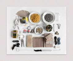 Do it yourself (you will need the following) - Aldo Tolino