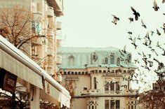 It feels like freedom #birds #freedom #birdsflying #sky #nolimits #street #streetphotography #photographer #worldphotoorg #worlpressphoto #moodygrams #sonyalpha