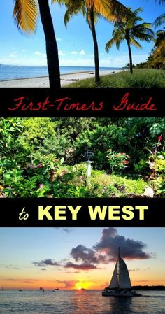 Things to Do in Key West for the First-Timer Key West Top Things to Do! The combination of acceptance, lack of judgement and…Key West Top Things to Do! The combination of acceptance, lack of judgement and… Florida Vacation, Florida Travel, Vacation Spots, Travel Usa, Florida Trips, Vacation Ideas, Visit Florida, Overseas Travel, Usa Roadtrip