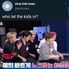 Funny Kpop Memes, Kid Memes, Bts Funny Videos, Savage Kids, Happy Birthday Video, Gymnastics Videos, Felix Stray Kids, Crazy Kids, Kids Wallpaper