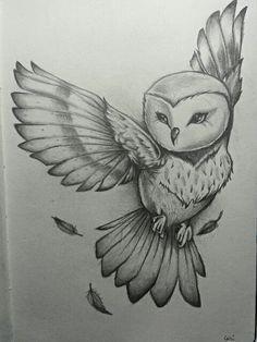 By Cari Espinosa. Owl Drawing / Sketch