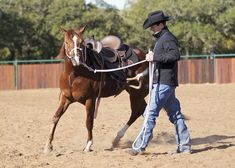 Stirrup Driving Your Young Horse. Teach your colt to accept the feel of a saddle in motion to avoid getting bucked off later.