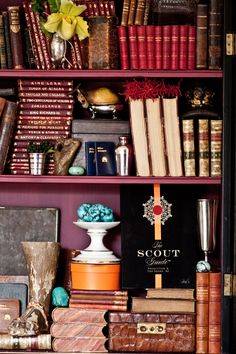 Rich & layered bookshelf styling by Jan Roden Bookshelf Styling, Bookshelves, The Scout Guide, Charlottesville, Color Stories, Vignettes, Interior Inspiration, Eye Candy, Orange Brown