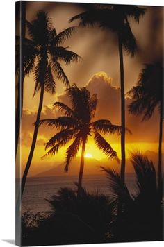 Below a selection of the most beautiful pictures from Tahiti. One of the most beautiful places on earth. Tahiti is the largest island in . Beautiful Sunset, Beautiful Beaches, Beautiful World, Nature Architecture, Belle Photo, Vacation Spots, Wonders Of The World, Palm Trees, Most Beautiful Pictures