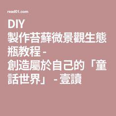 DIY 製作苔蘚微景觀生態瓶教程 - 創造屬於自己的「童話世界」 - 壹讀