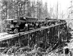 four garford logging trucks carrying loads of logs on a temporary trestle © Univ. of WA. State