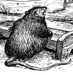 """You may remember him – Templeton  – the rat in Charlotte's Web  of whom E.B White writes: """" 'Why does he have to stay up all night , grindin..."""