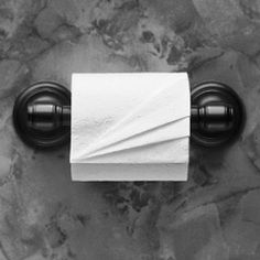 Toilet Paper Origami: Delight your Guests with Fancy Folds & Simple Surface Embellishments or Easy Origami for Hotels, Bed & Breakfasts, Cruise Ships & Creative Housekeepers (Crafts/Towel Folding)