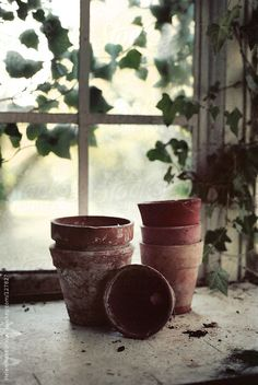 Teracotta Pots on a potting bench by HelenRushbrook   Stocksy United