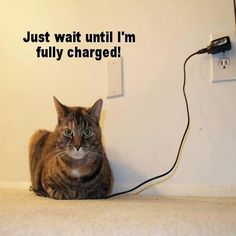 Just wait until I'm fully charged!